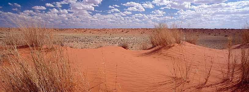 Kalahari 02