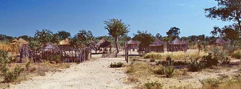 Bushmen 06